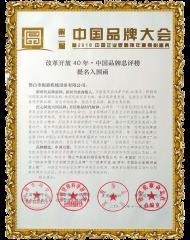 振嘉高频机-中国品牌大使